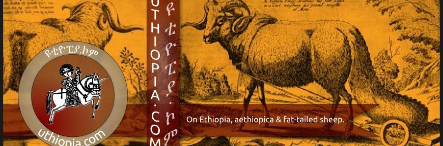 uthiopia_banner_wordpress.png