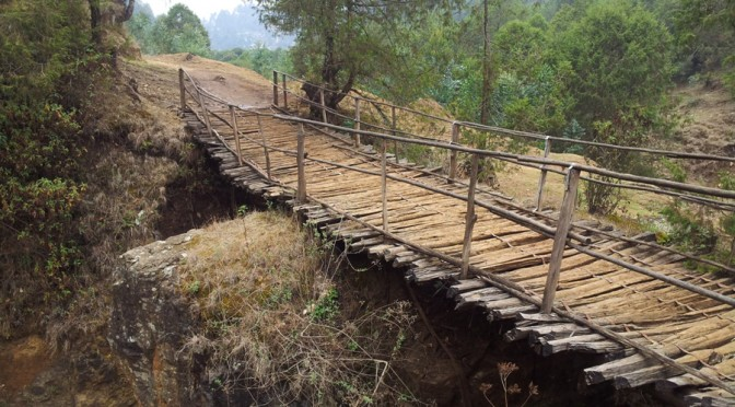 The Road to Entoto (Juniper forest and stream less than 1 km from Addis Ababa)